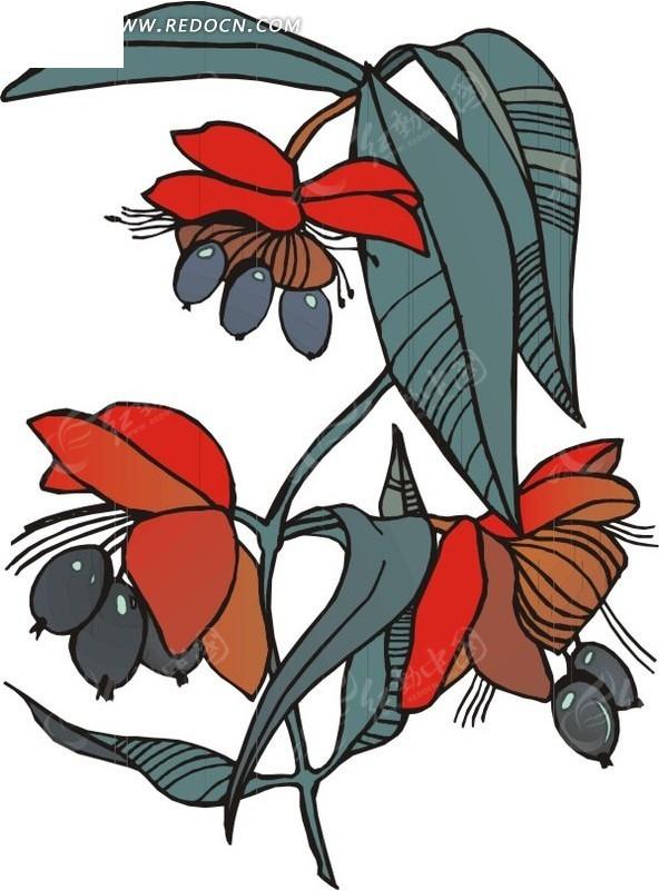 植物的果实手绘图片