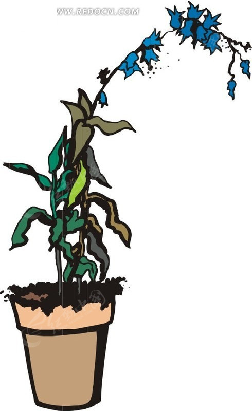 手绘花盆里的叶子和蓝色花朵