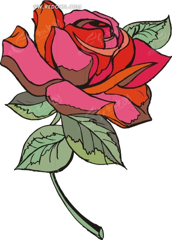 手绘绿叶和红色玫瑰花