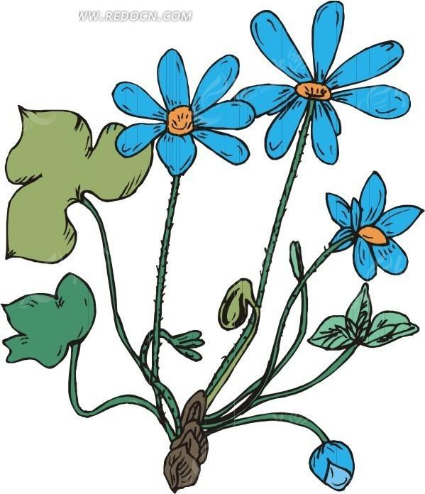 手绘叶子和蓝色花朵