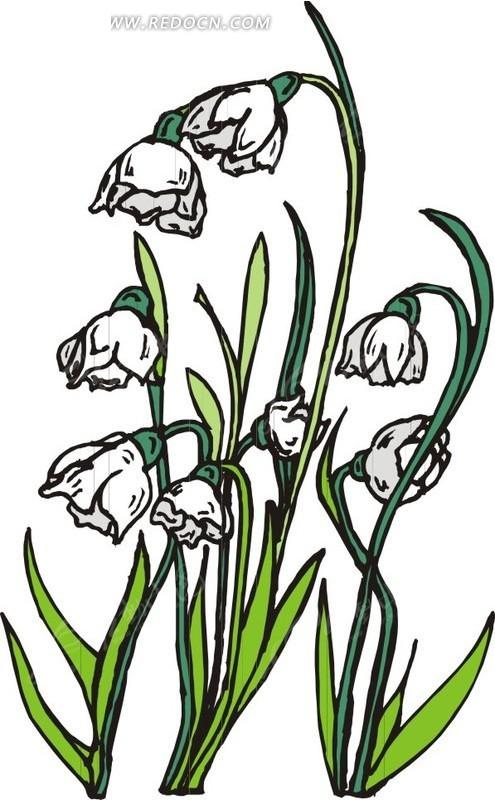 白色花朵 绿叶 鲜花 花 卡通画 插画 手绘 矢量素材