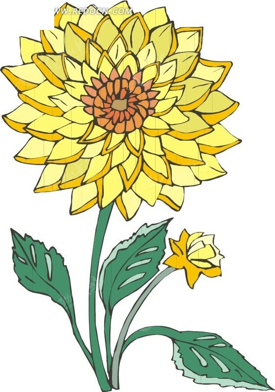 一朵向日葵