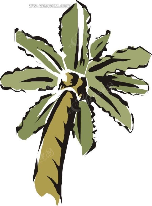 手绘椰子树仰拍图