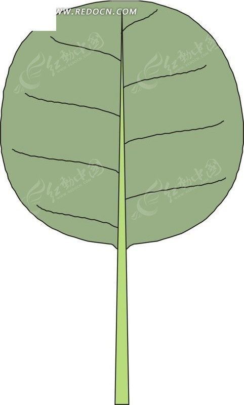 手绘圆形绿色叶子
