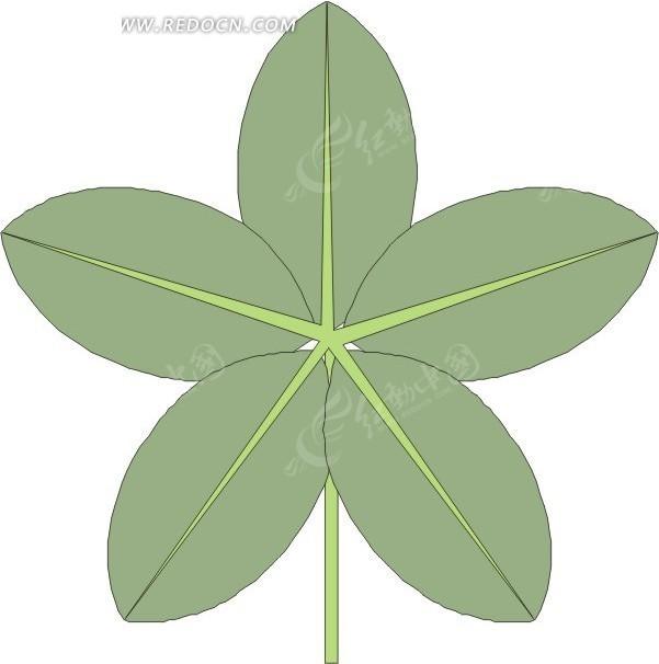 五片手绘绿色叶子