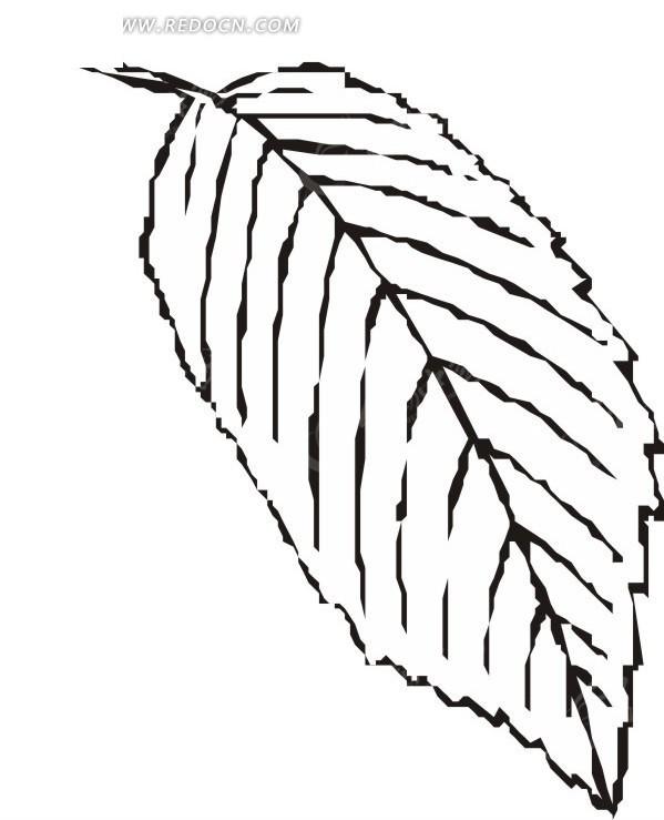 片叶子矢量图 花草树木