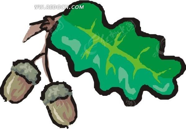 手绘翠绿色的叶子和棕色果子图片