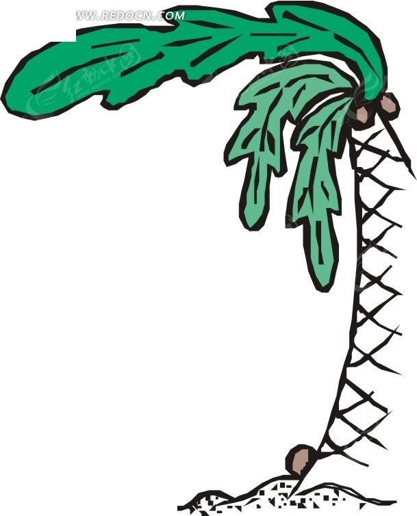 手绘椰子树下的椰子
