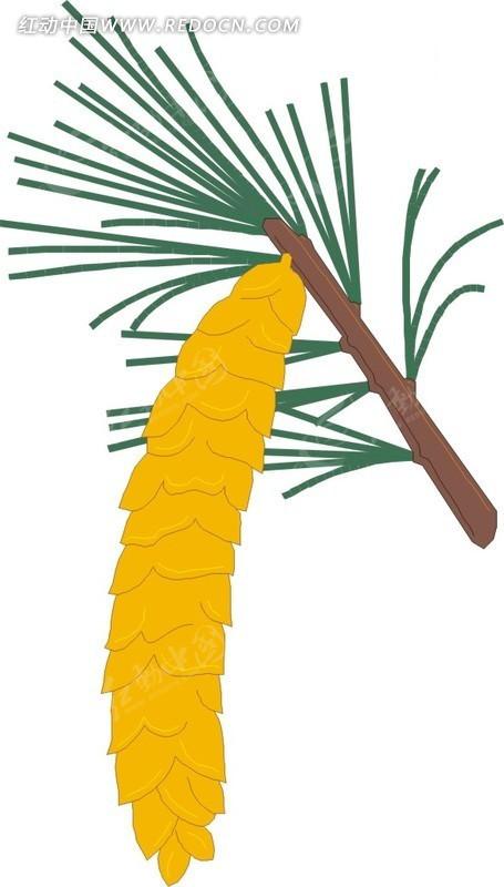 手绘棕榈果