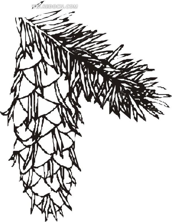简笔画大全花草树木-手绘松叶和朝下的松果矢量图 花草树木