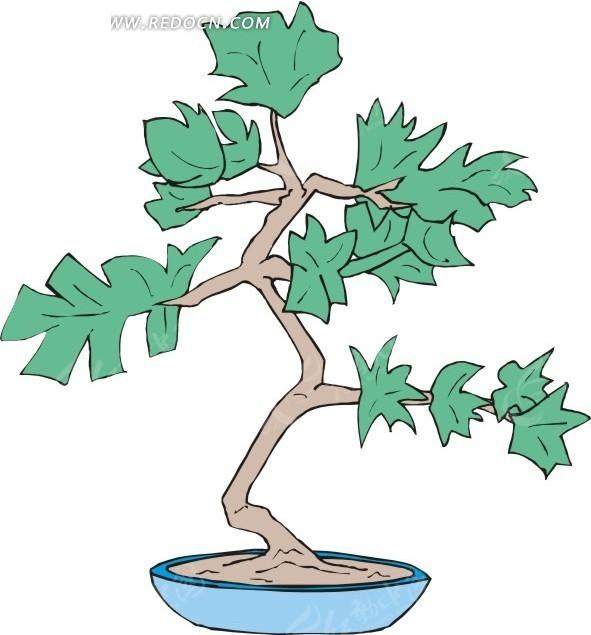 手绘绿树盆栽