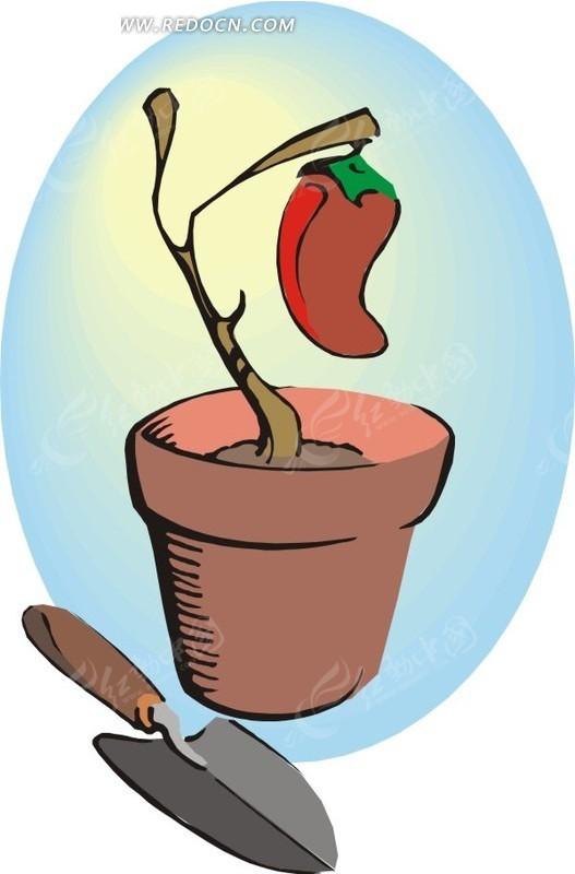 手绘花盆里的红辣椒