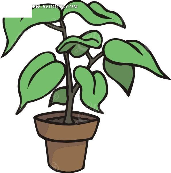 盆栽 植物 矢量素材
