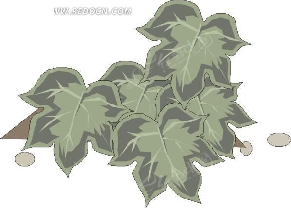手绘墨绿色掌形的叶子