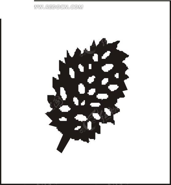 黑色松果图片