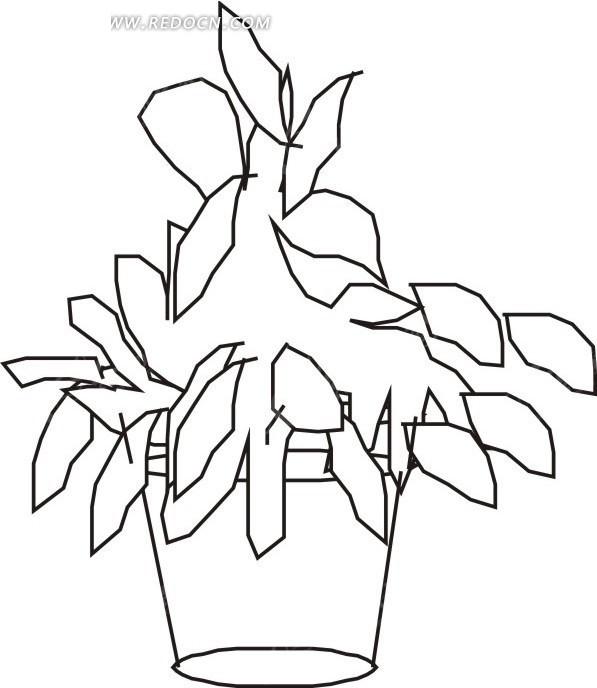 手绘简易花盆里的植物