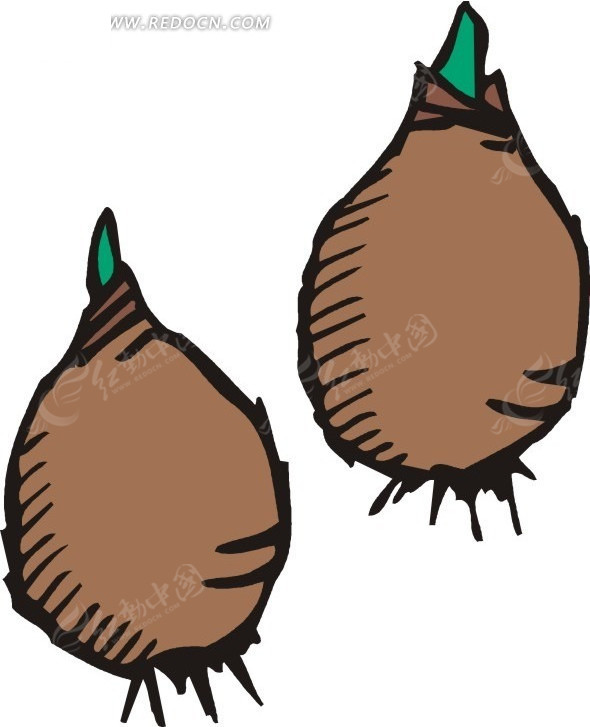 种子发芽图片卡通