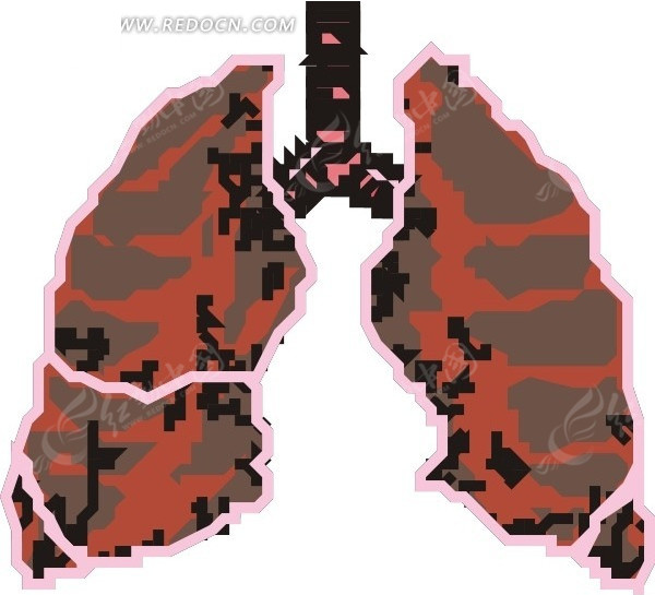 手绘肺叶矢量图_人体器官