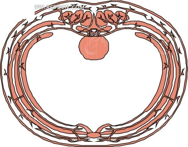男性盆腔解剖结构示意图