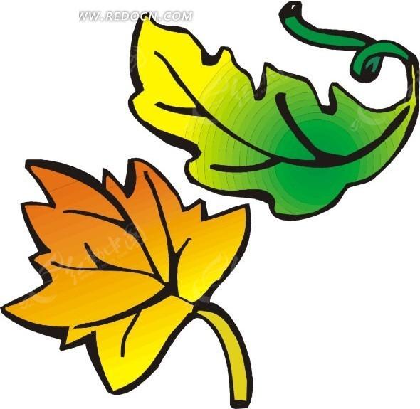 叶子 树叶 植物 植物图片 矢量素材 eps 生活用品 生活百科