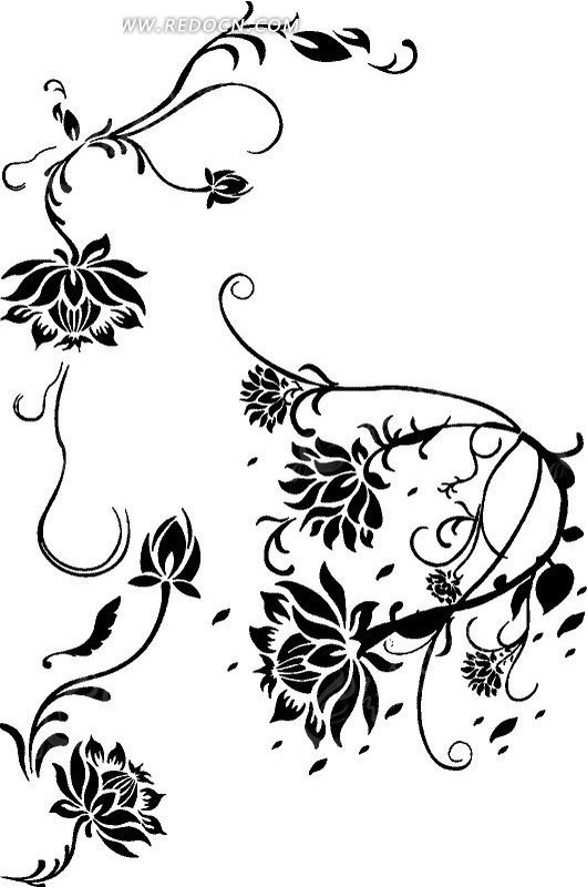 叶子 藤蔓 植物 手绘 线描图