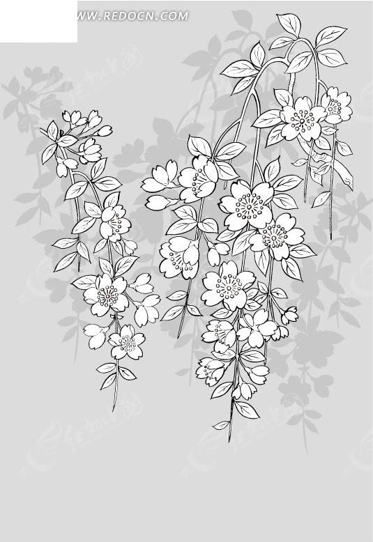 手绘线描白色花朵EPS素材免费下载 编号1627037 红动网图片