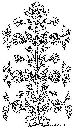 对称的开花植物线描图