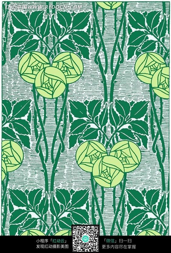 手绘绿色植物叶子插画文件图片