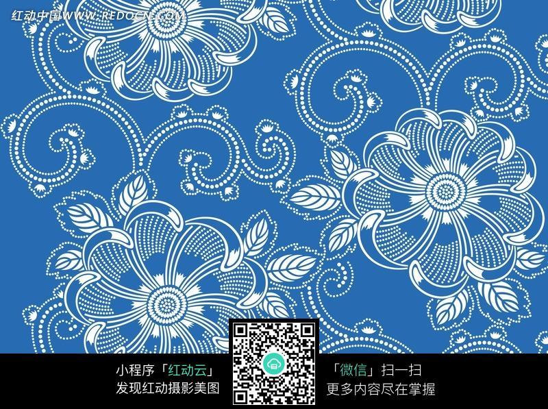 括号状花边-花纹图片 花朵 蓝色背景