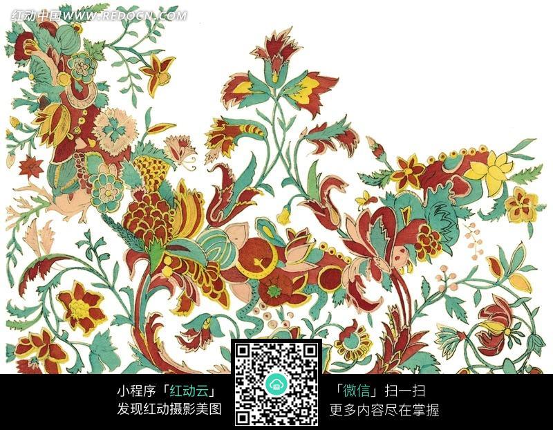 手绘精美的花草花藤图案图片