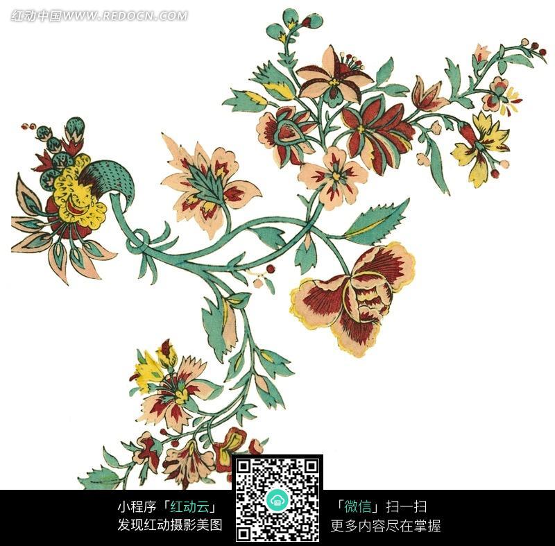 精美花枝花藤图案图片