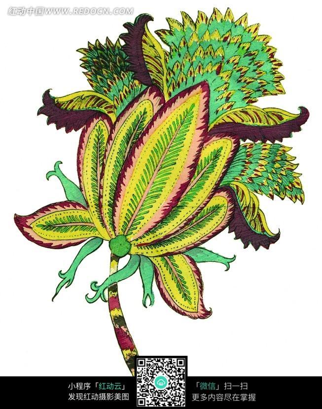 褐黄绿齿边扇羽形花瓣扇形叶子的植物图案_花纹花边