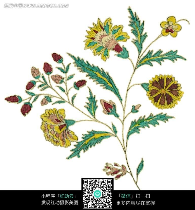 手绘漂亮的花枝图片