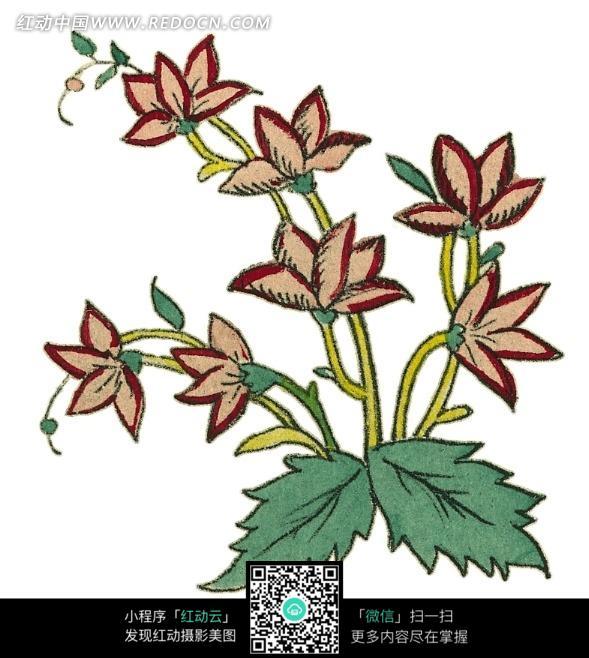手绘漂亮的花枝绿叶