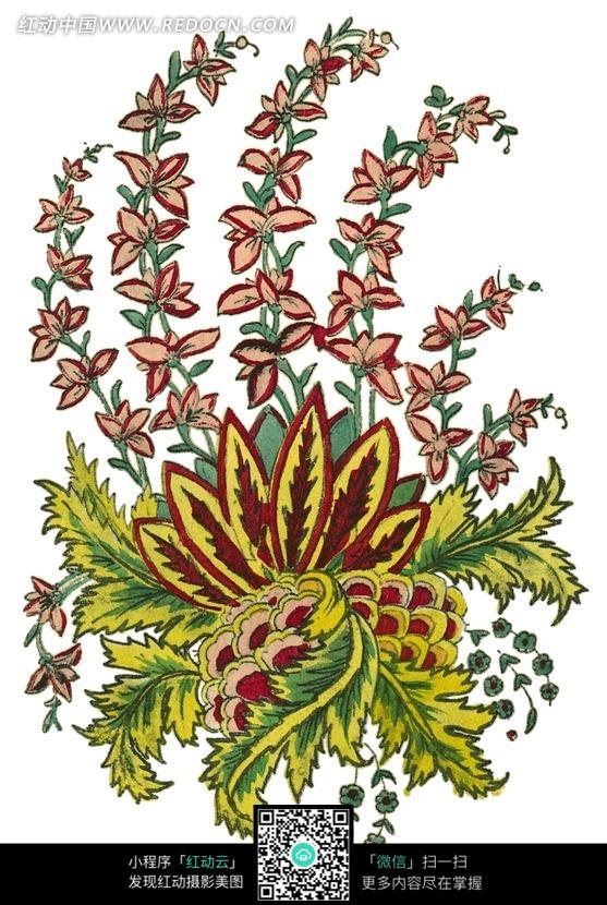 手绘精美的花朵枝叶图片