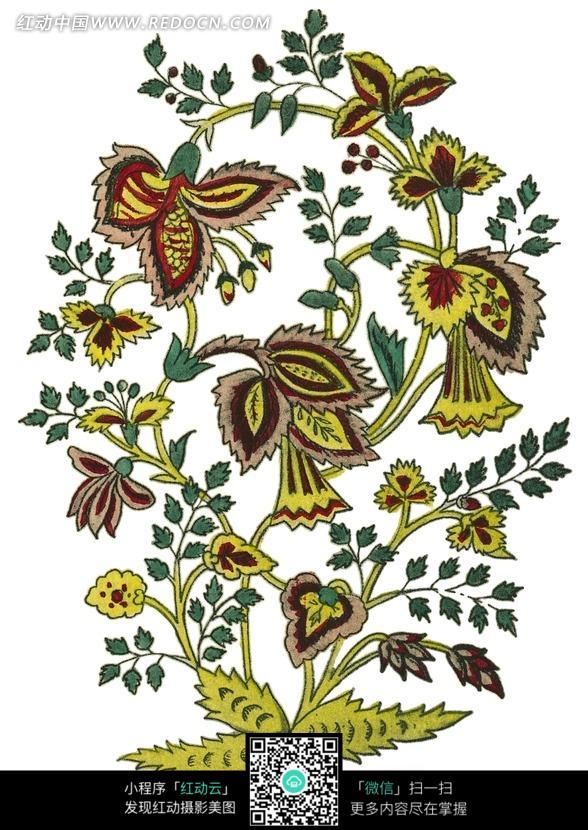 手绘精美的花藤图片