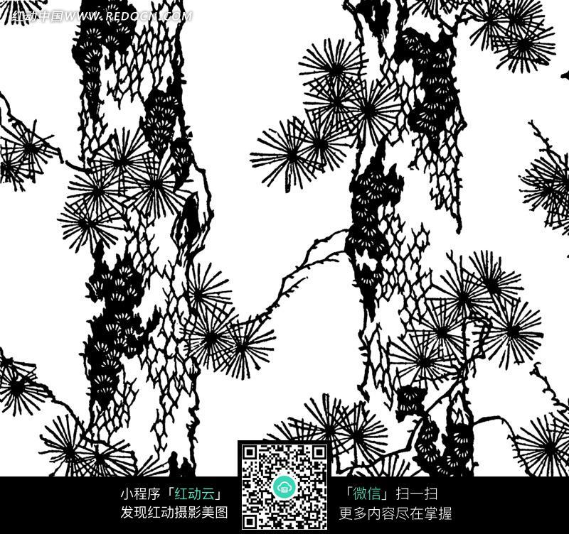 松树的黑白图画图片