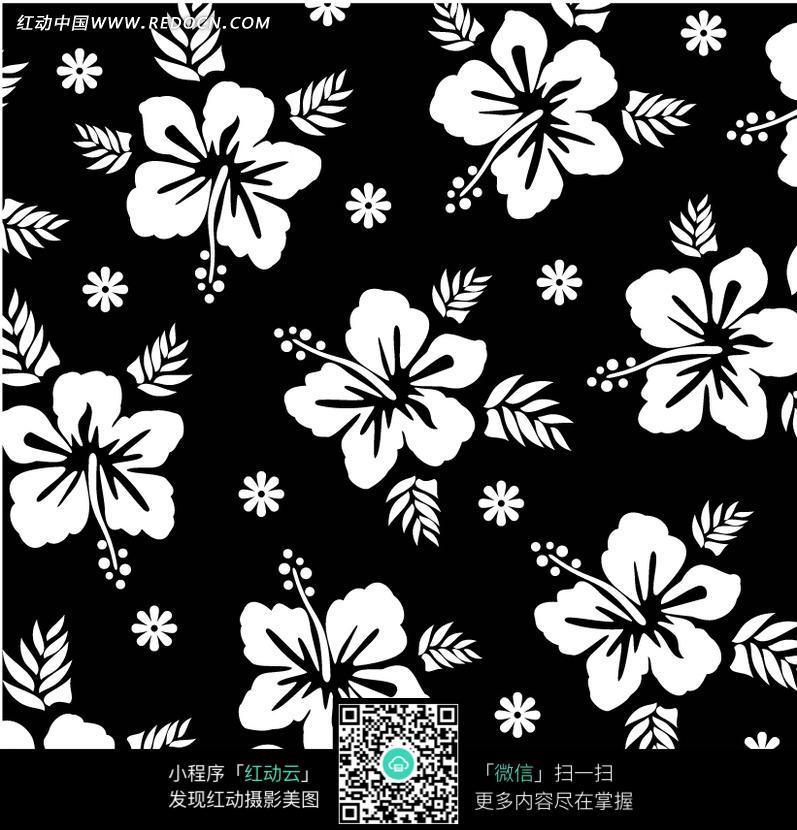 色背景白色花朵四方连续图案图片