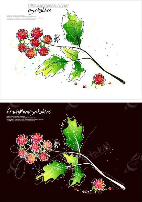 手绘成熟的树莓