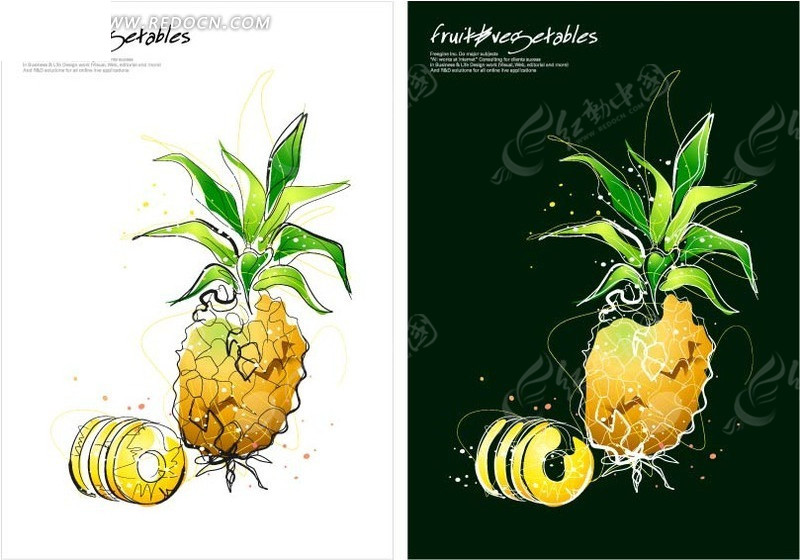 手绘成熟的菠萝矢量图