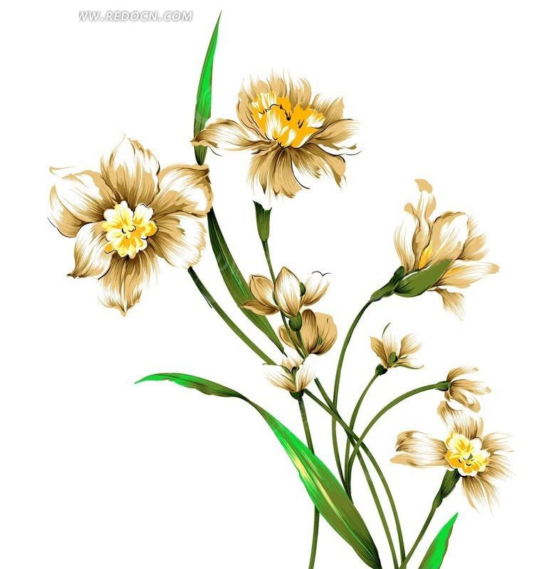 手绘   水仙花   叶子  分层素材 psd素材 psd分层素材  花纹 花纹