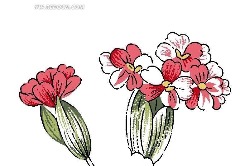 手绘红色调美女樱与叶子 花纹花边