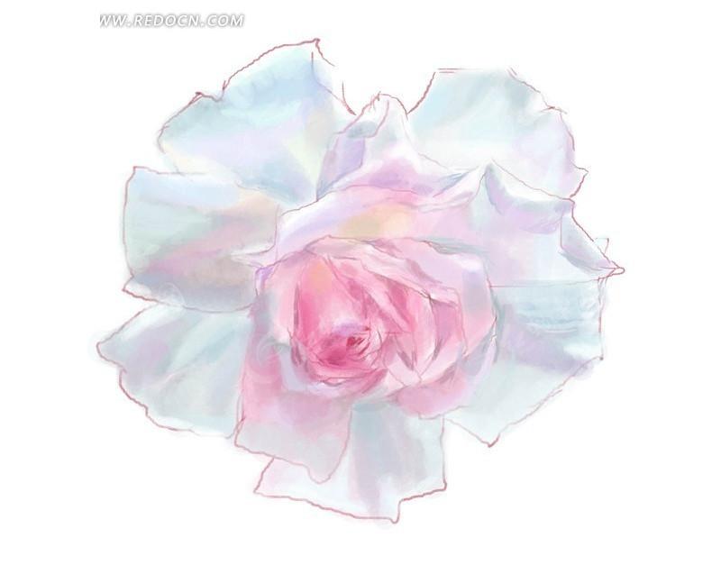 手绘粉色调月季花