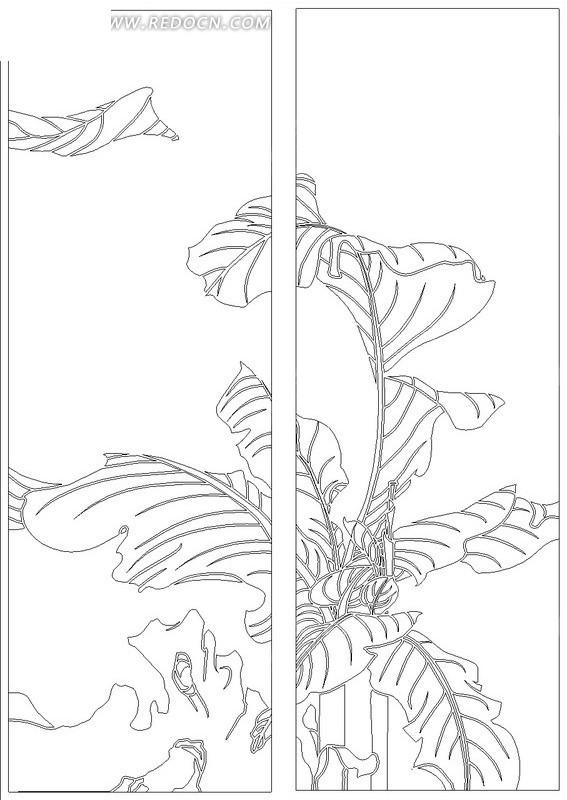 植物 石头 手绘