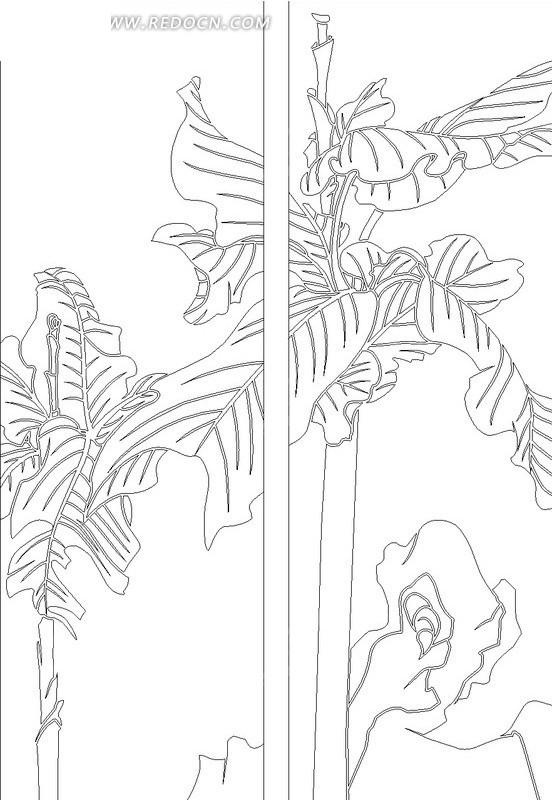 石头上的芭蕉叶线描图图片