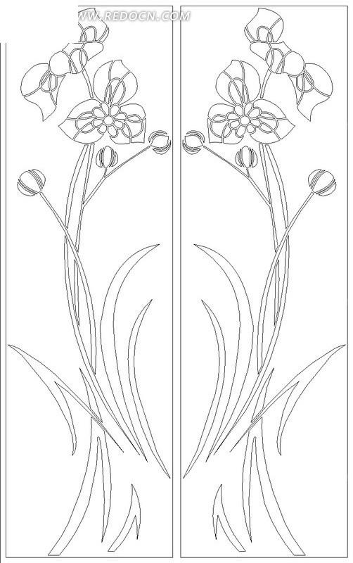 对称的花朵盛开的植物线描图