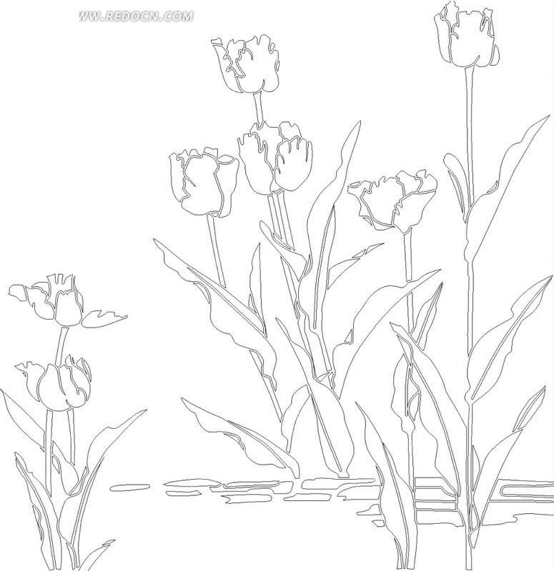 铅笔手绘花朵百合