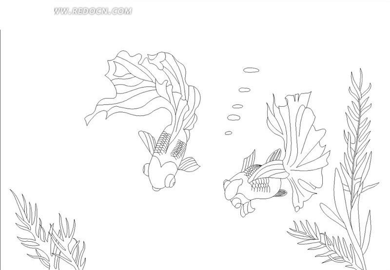 抽象金鱼手绘图片