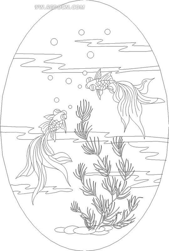 游动的金鱼和水草线描图图片