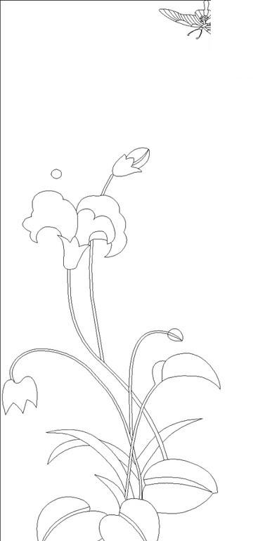 素描画蝴蝶的图片; 图片